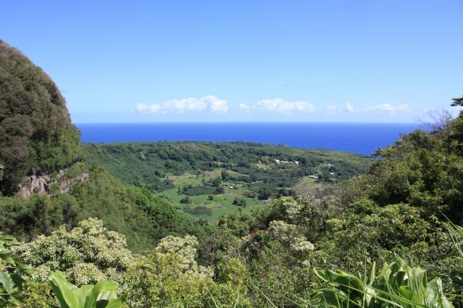 Hawaii2009 210