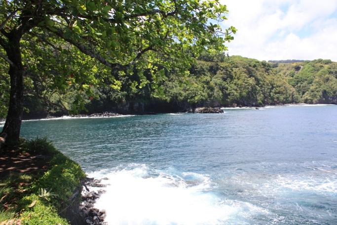 Hawaii2009 216-5