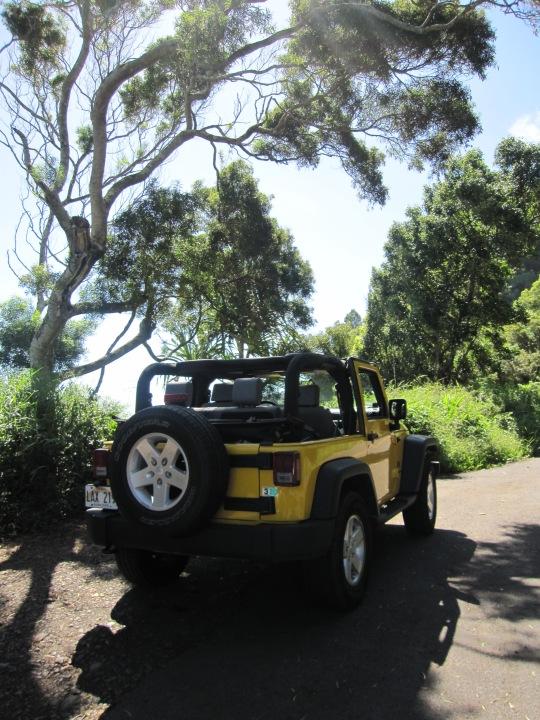 Hawaii2009 217