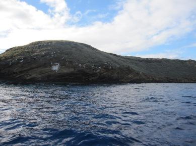 Hawaii2009 915
