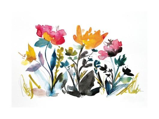 island wildflowers